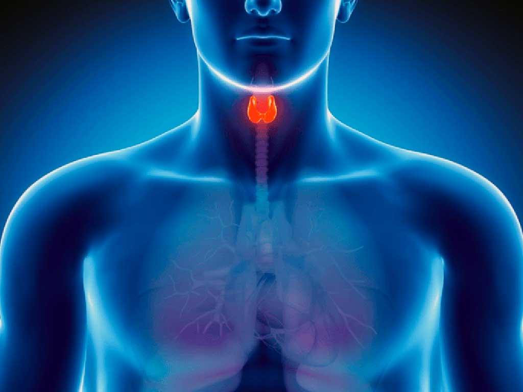 perda-auditiva-causada-por-alteracoes-tireoide